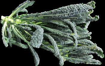 vegetable-2613673_640