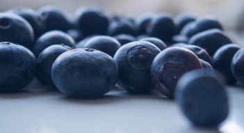 blueberries-925660_1920
