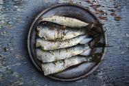 sardines-1489630_640